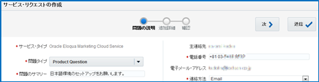 日本語化4