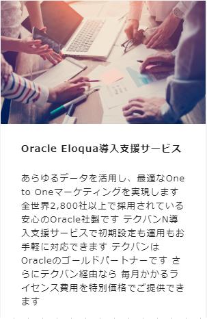 Oracle Eloqua導入支援サービス